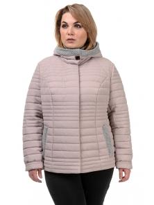 Куртка демисезонная «Дора», р-ры 48-54, №241 пудра