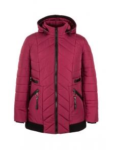 Демисезонная куртка «Норма», р-ры 50-58, №213 бордо